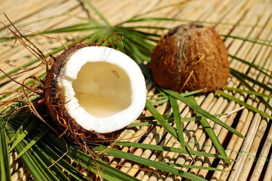 coconut-1501334_960_720