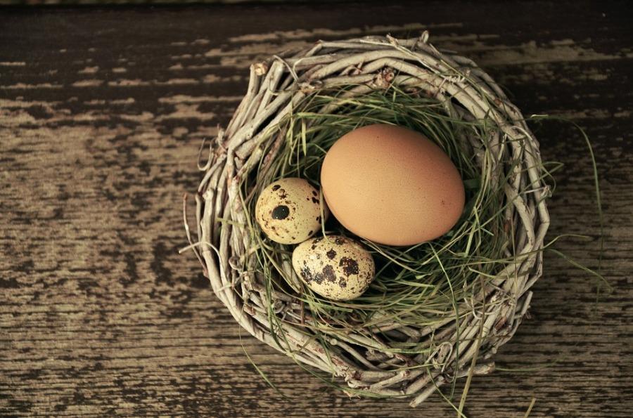 egg-1272815_960_720