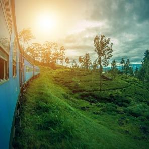 srilanka-2792097_960_720