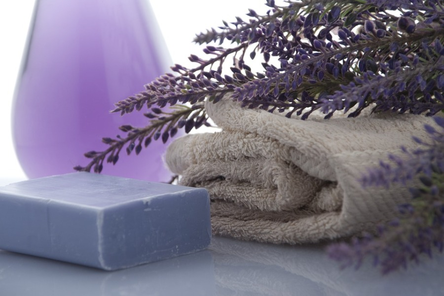 lavender-3066531_960_720