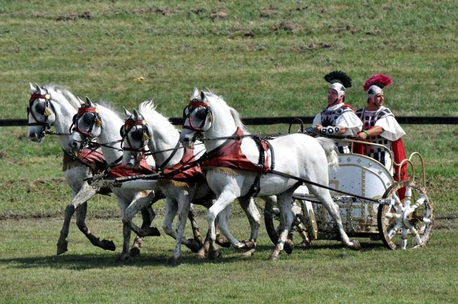 ridders - middeleeuwen - rondreizen - puur van geluk