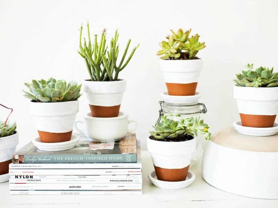 planten-potjes-groen-geluk-puurvangeluk