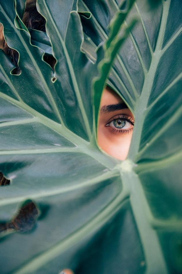 hooikoorts-pollen-ogen-puurvangeluk