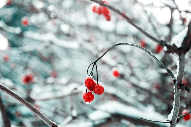 buitenleven-winter-zomergevoel-tips-puurvangeluk