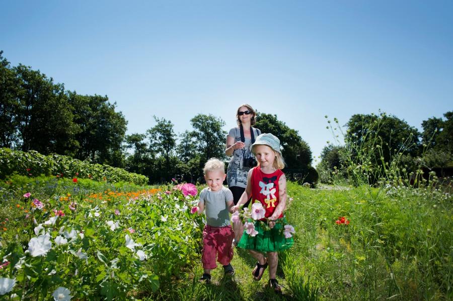 Pluktuin-Terschelling-vakantie-weekend-weg-puurvangeluk