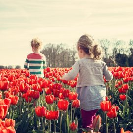 koningsdag woningsdag meisjes bloemenvelden puur van geluk